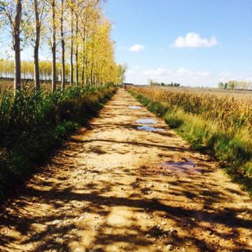 Camino-de-Santiago-2014-005